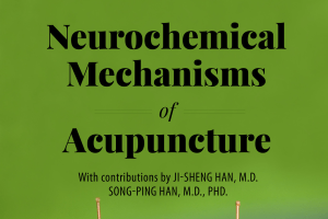 Neurochemical Mechanisms of Acupuncture