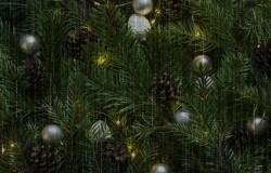 Christmas Tree conspiracy