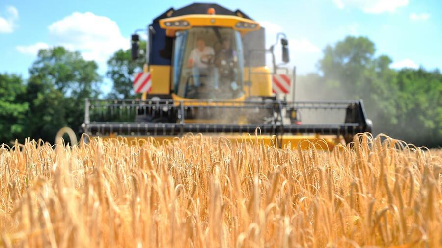 """""""Big Data"""" soll die Arbeit der Bauern revolutionieren. Quelle: dpa"""