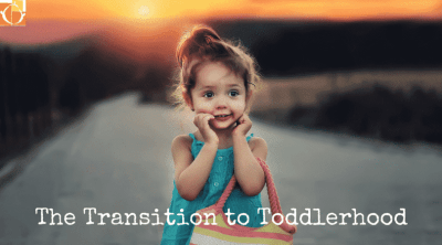 The Transition to Toddlerhood(1)