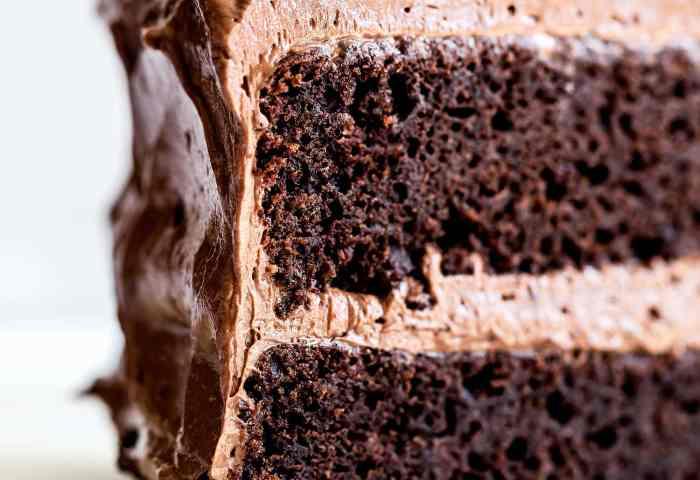 Best Chocolate Cake Handle The Heat