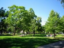 Sonntags im Park