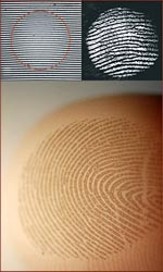 Fingerprints provide finger grip + a touch-filter.