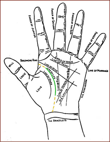 Palmistry: the hand lines & the life line.