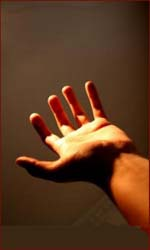 The Alien Hand Syndrome.