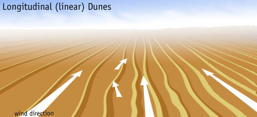 Longitudinal dunefield diagram