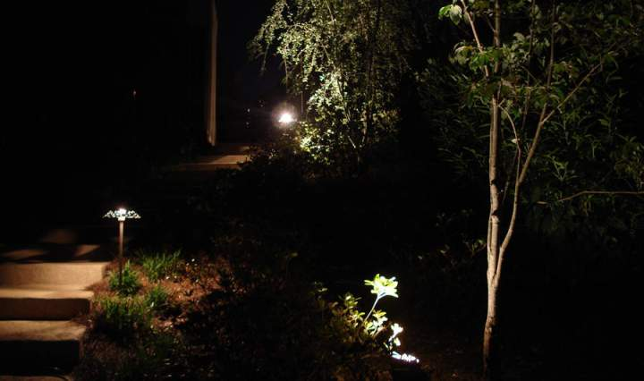 Atlanta Landscape Lighting