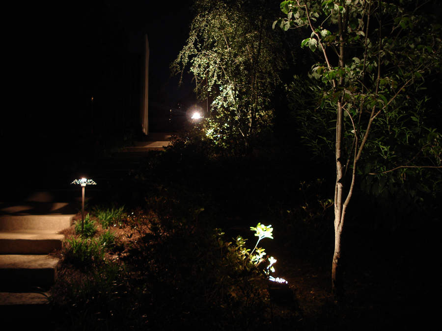 Atlanta Landscape Lighting