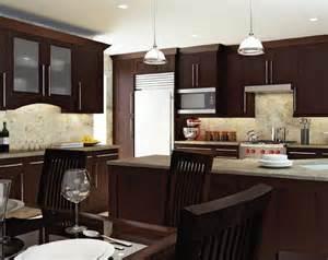 Shaker Kitchen Cabinets Kitchen Design Ideas