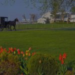 Yoder's Amish Furniture Review