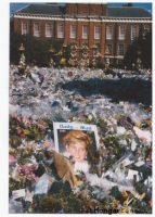 Printed photographs from visiting the London floral tributes to Princes Diana at Kensington Palace 1997 September