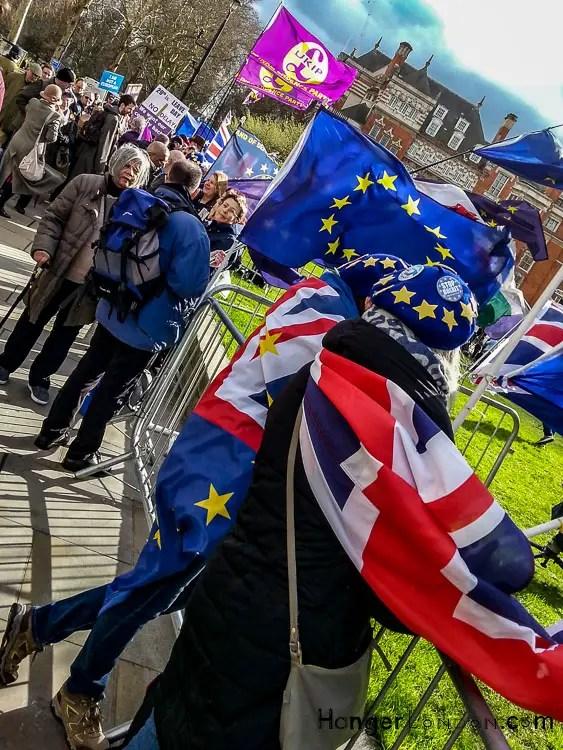 Brexit protestors 5