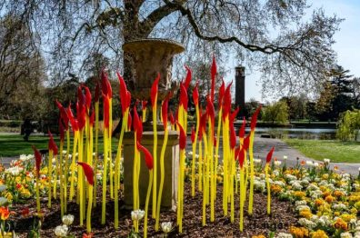 """Chihuly glass stems of red and yellow in front of the Palm House lake Kew """"Paintbrushes"""""""