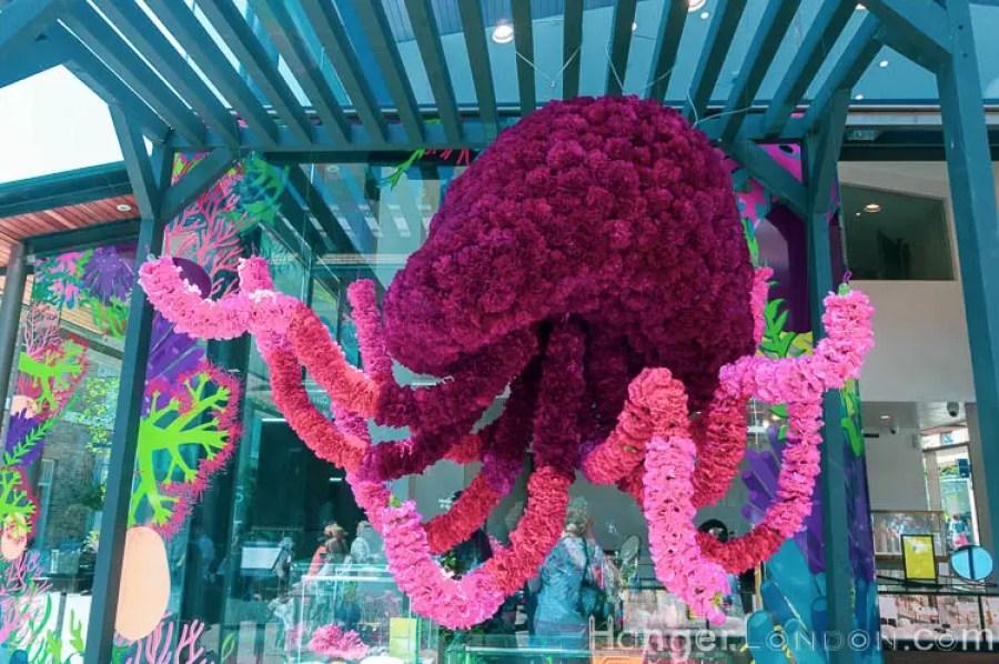 Chelsea in Bloom 34 octopus