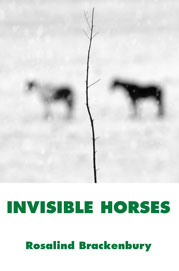 Invisible Horses