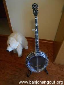 Alvarez Silver Belle 5 String Banjo Used Banjo For Sale