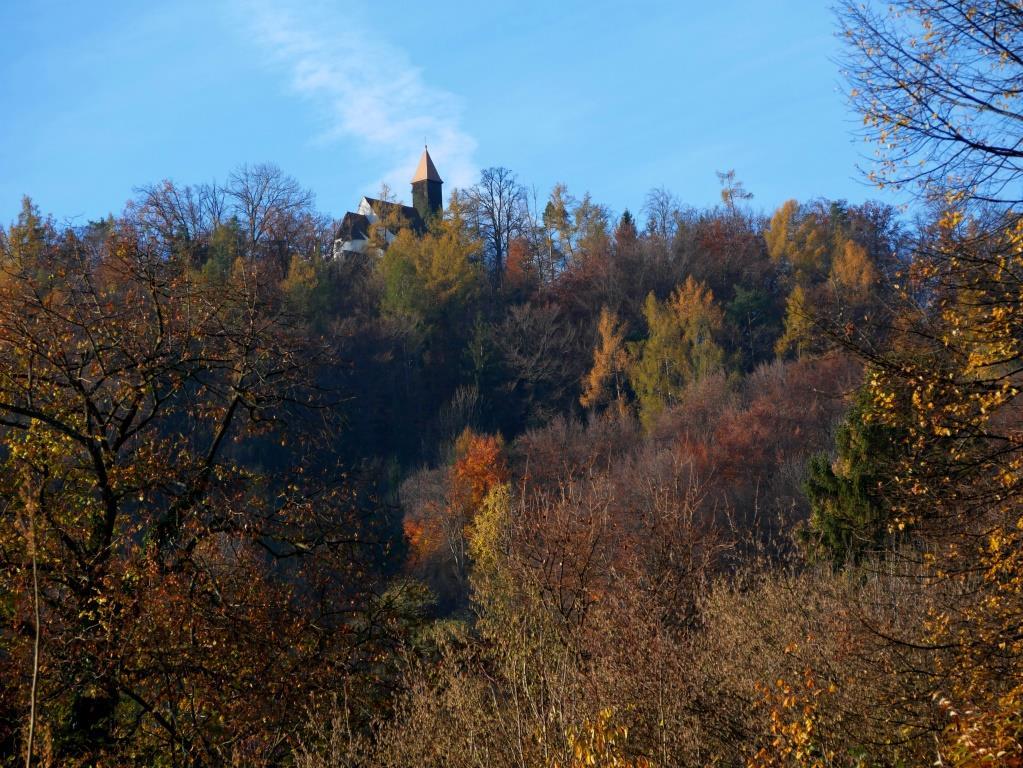 Herbsticher Ausblick von der Terrasse