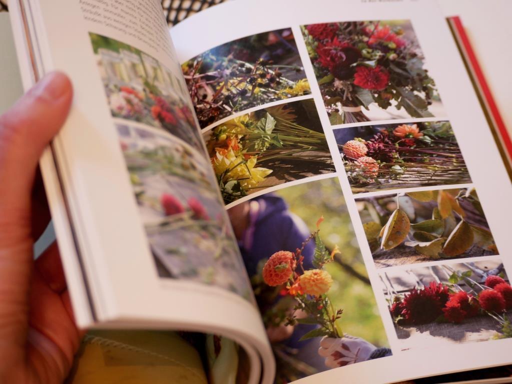 Schöne Schnittblumen inklusive Details zu Pflanzung, Pflege und Ernte