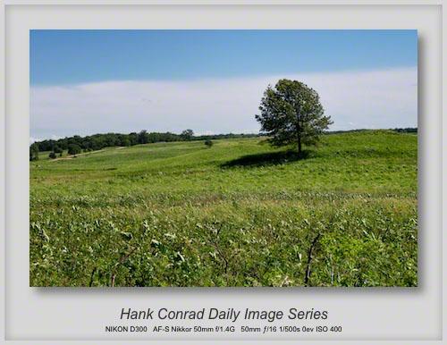 6/25/2013 Illinois Prairie