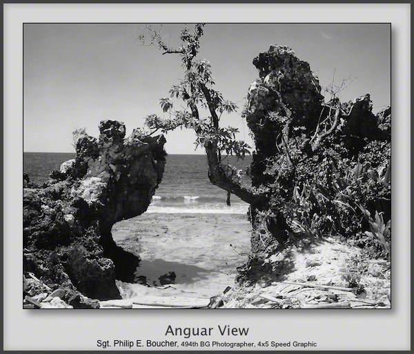 Anguar View