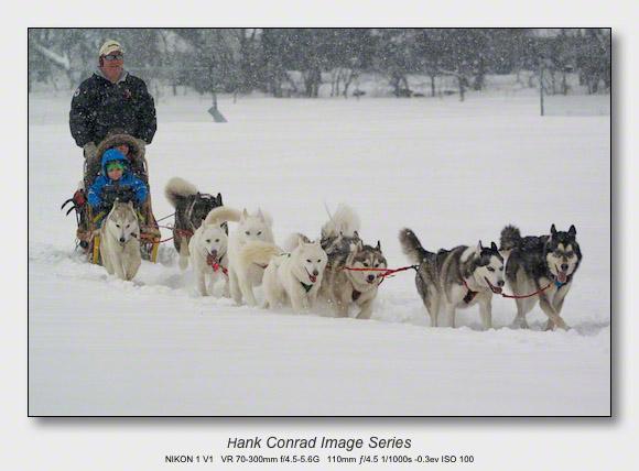 Husky Dogsled Party | Huskies Love Snow