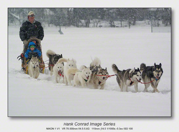Husky Dogsled Party | Huskies Love Snow