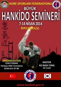 hankido seminar turkey 2014