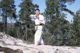chonkibup hankido 2