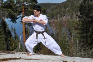 hapkido strikes
