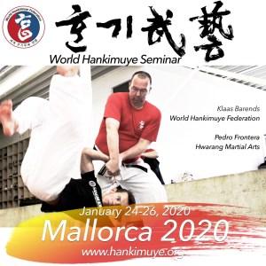 Hankido Mallorca Seminar Hankimuye 2020