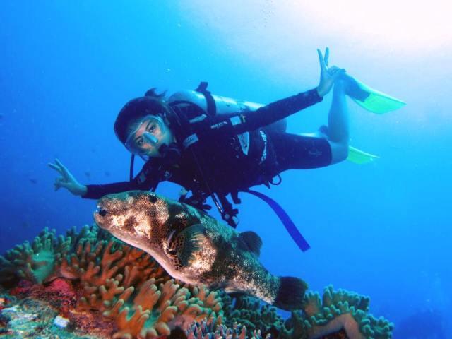 14650737 10157580112210484 1723678944235373666 n - Tenggol Coral Beach Resort 月影湾の度假村