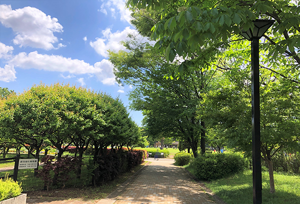 202105GWに江東区・木場公園で新緑を楽しむ