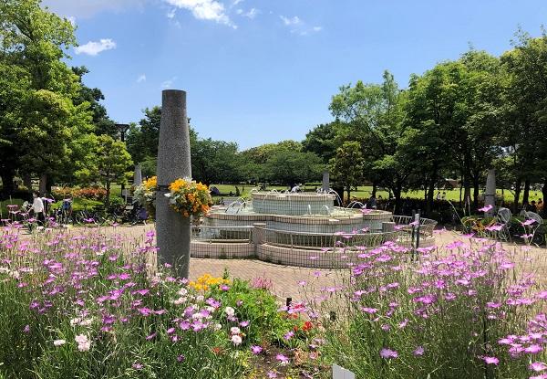 202105江東区・木場公園の噴水周辺