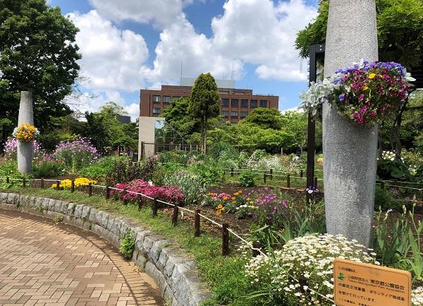 202105江東区・木場公園の都市緑化植物園で