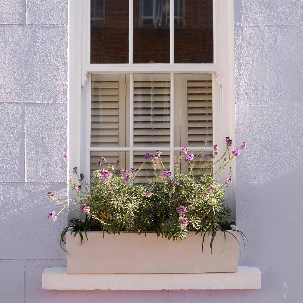 Window box wonder