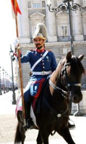 Horse and rider at the changing of the guard - Art and Tapas in Madrid