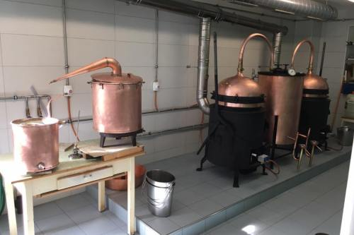 Artemisia Distillery - Absinthe Festival - HH Lifestyle Travel