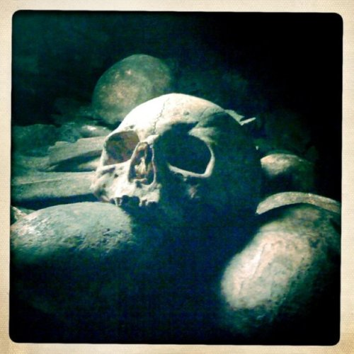 Skull in the Paris Catacombs - Paris 1.01 - A guide to my favourite city in the world - HH Lifestyle Travel