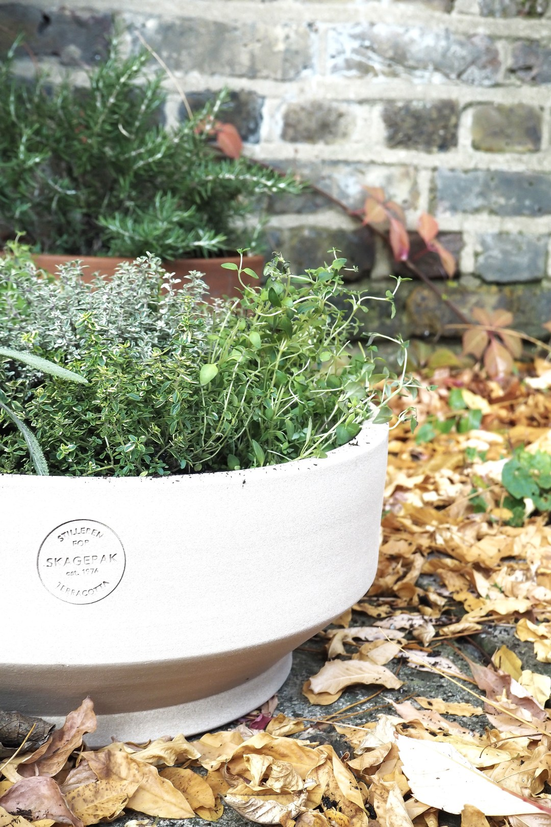 weekend project | planting a herb garden