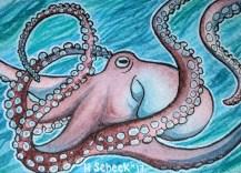 Maroon Octopus