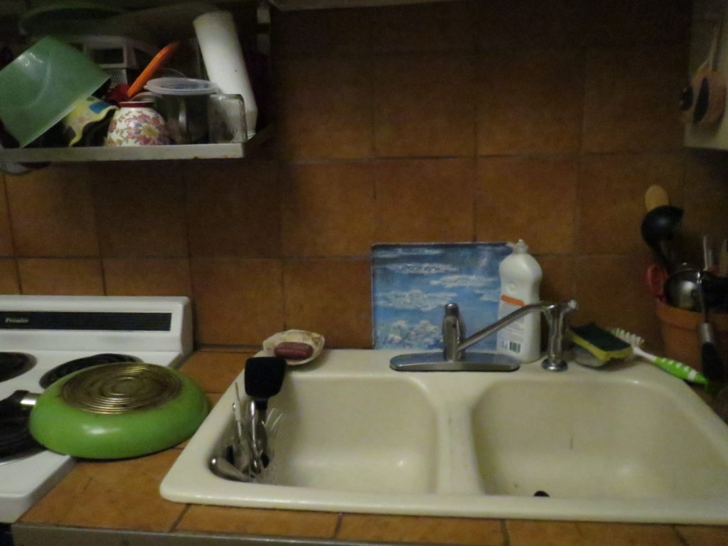 the dinner dishes, washed