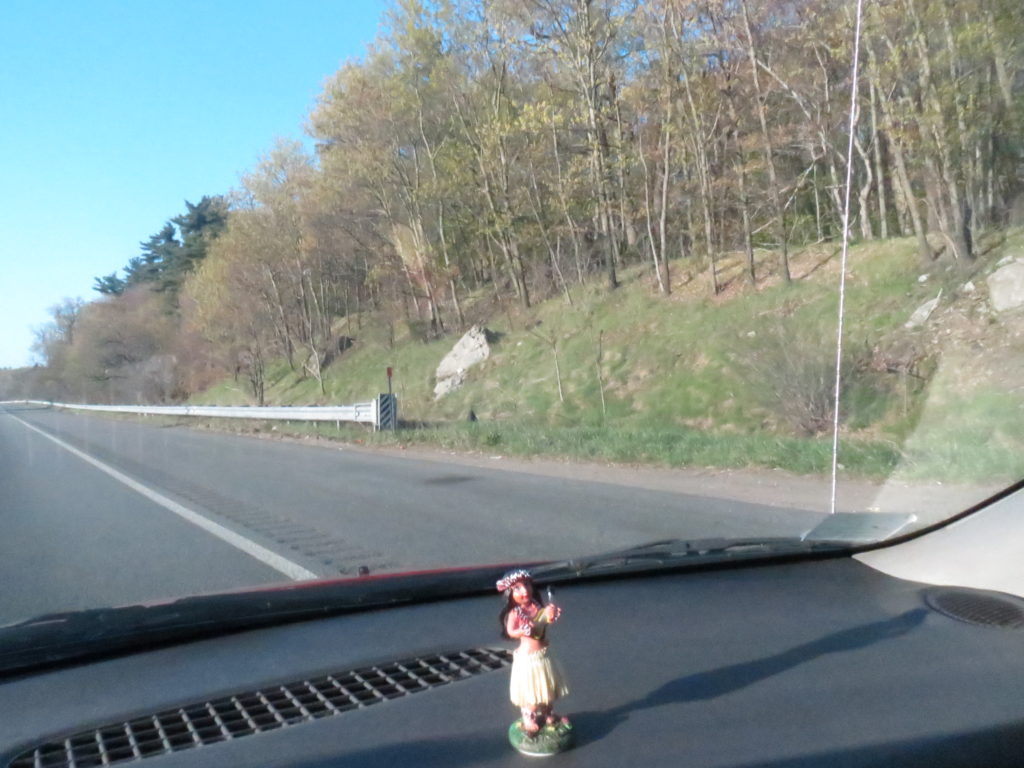 hula girl on the dashboard chuckling