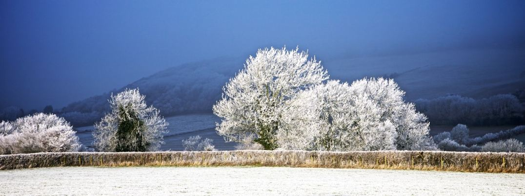 21_Winter
