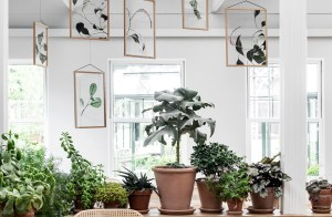 Botanical prints and Scandinavian frames. Moebe presents Floating Leaves by Norm Architects and Paper collective