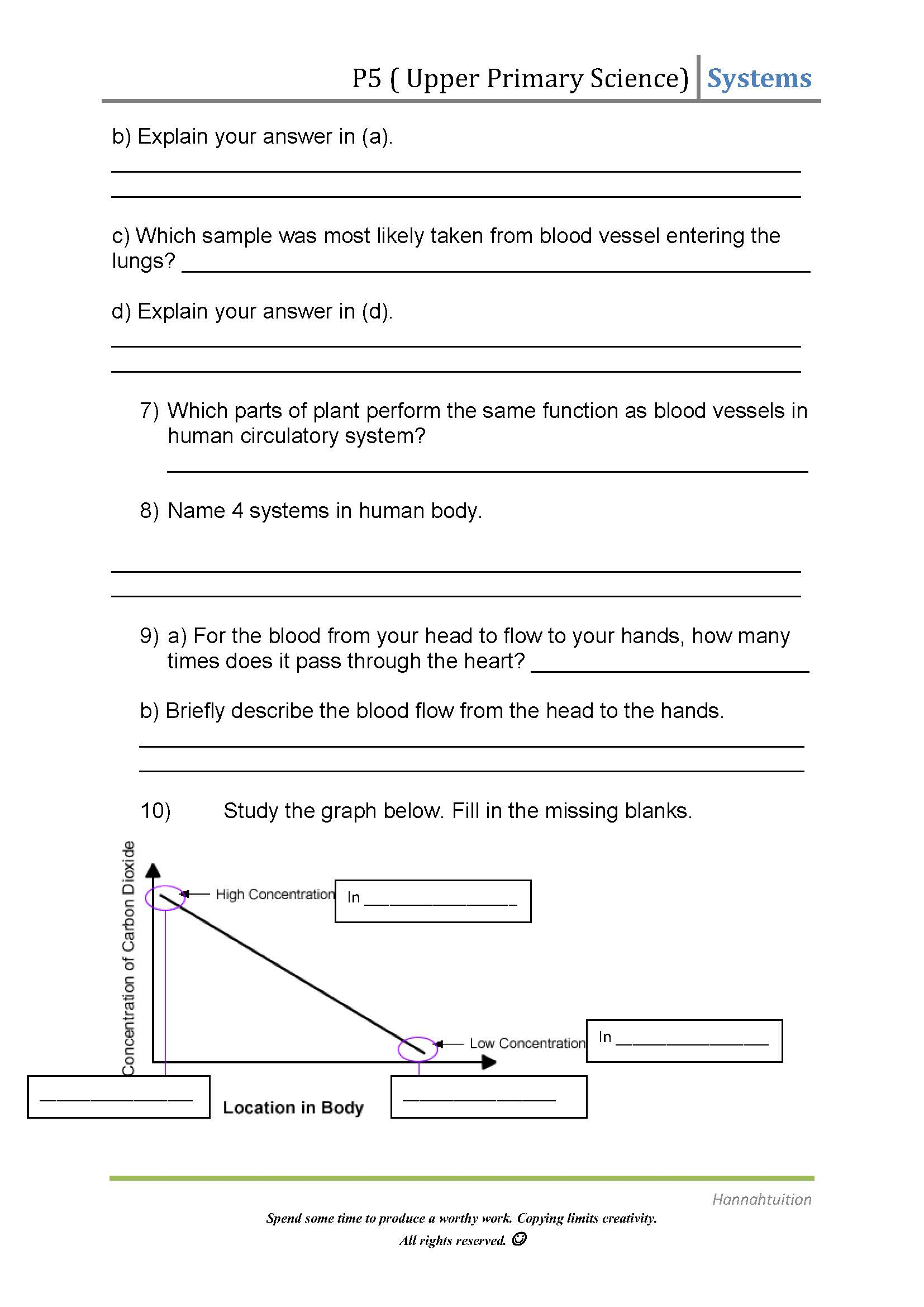 Upper Primary Science Human Circulatory System