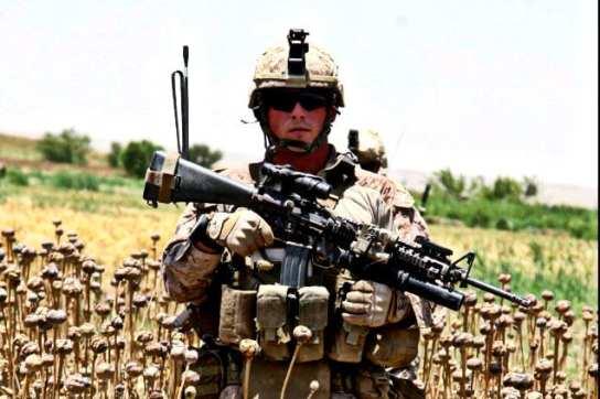 Afghanistan USA Drug Industry production Herland Report AP