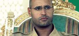 Salf al Islam Gaddafi Libya Newsweek