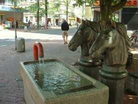 Pferdetränke von Max Saul