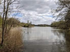 Großer Hemminger Teich