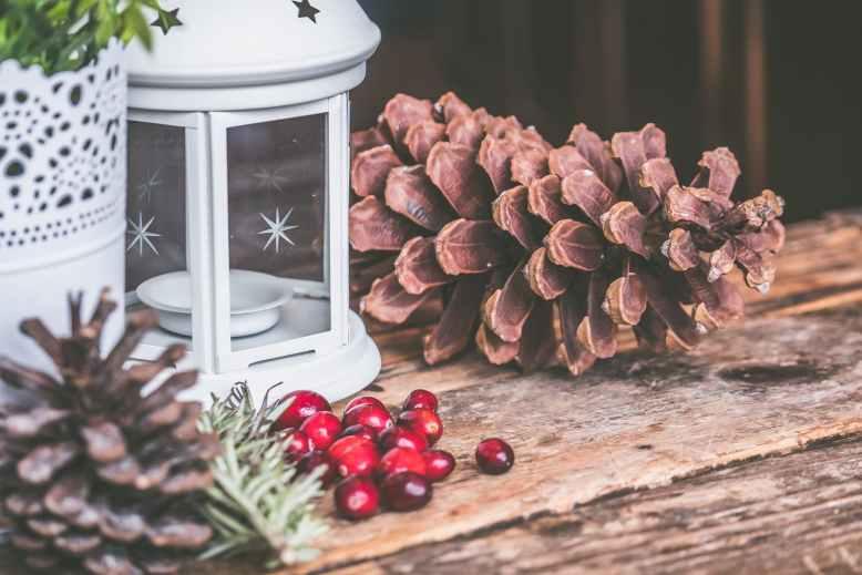 brown pinecone beside candle lantern